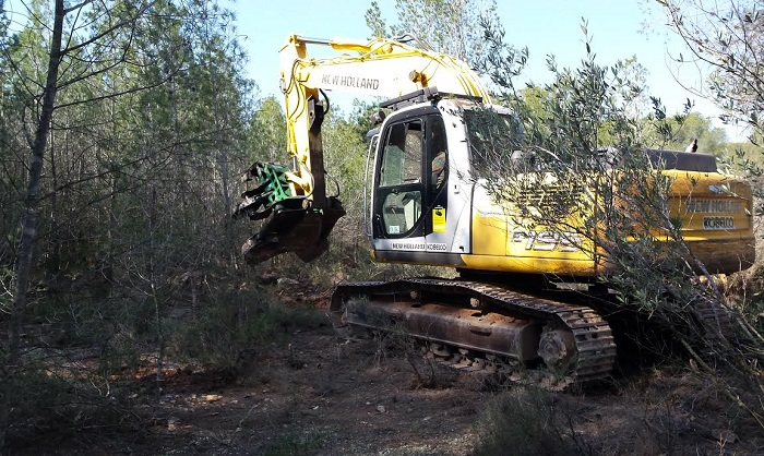 Las máquinas han entrado ya en el parque Pinares para eliminar los ejemplares afectados por el tomicus.