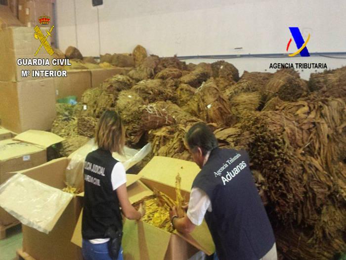 Tabaco incautado en los registros llevados a cabo en municipios de Camp de Túria.