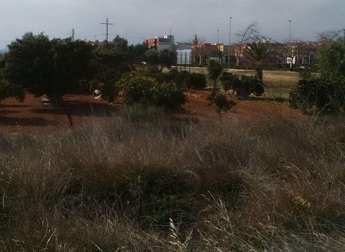 Terrenos pendientes de urbanizar en L'Eliana.