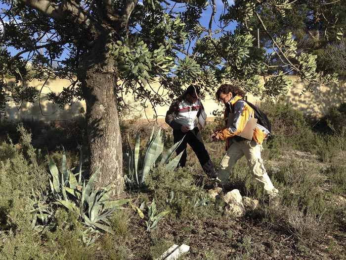 Voluntarias realizando el trabajo de campo en las urbanizaciones de Llíria.