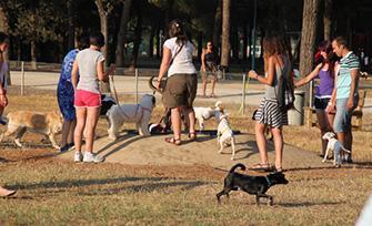Nuevas zonas de esparcimiento canino en Llíria