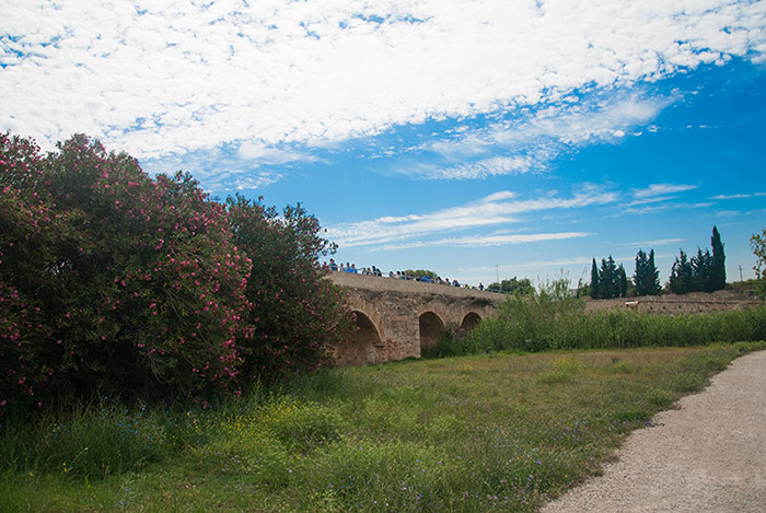 Visita Parque Natural del Túria