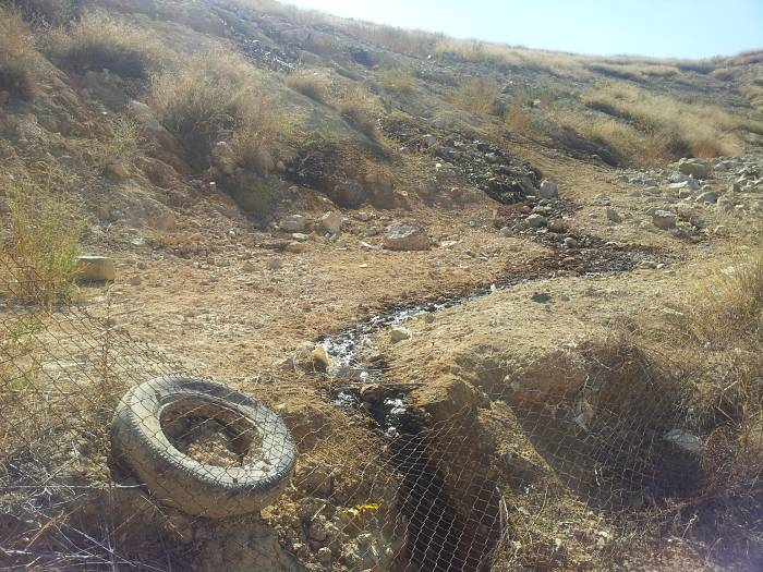 Los socialistas reclaman la recuperación medioambiental de la zona de Basseta Blanca.