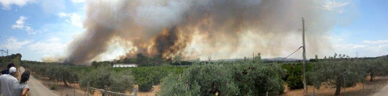 Incendio parque natural del Túria