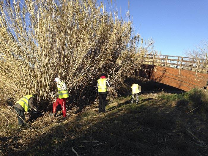 Los vecinos contratados por el Ayuntamiento llevan a cabo las tareas de limpieza en el Parque Natural del Turia.