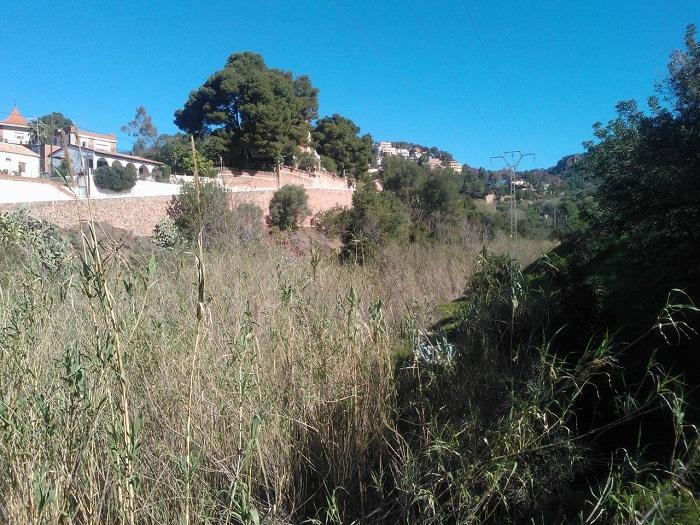 El Ayuntamiento de Serra ha advertido del mal estado de los barrancos del municipio.