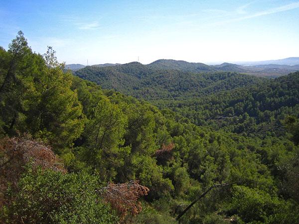Termino municipal de Vilamarxant, comarca del Camp de Túria
