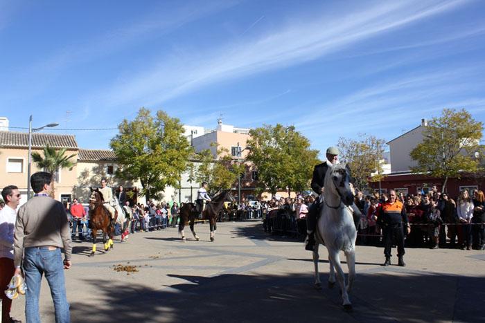 Els cavalls desfilen per Sant Antoni.