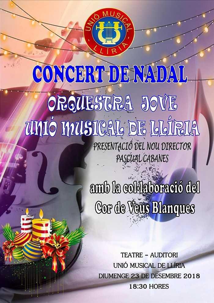 cartel concierto camp de turia