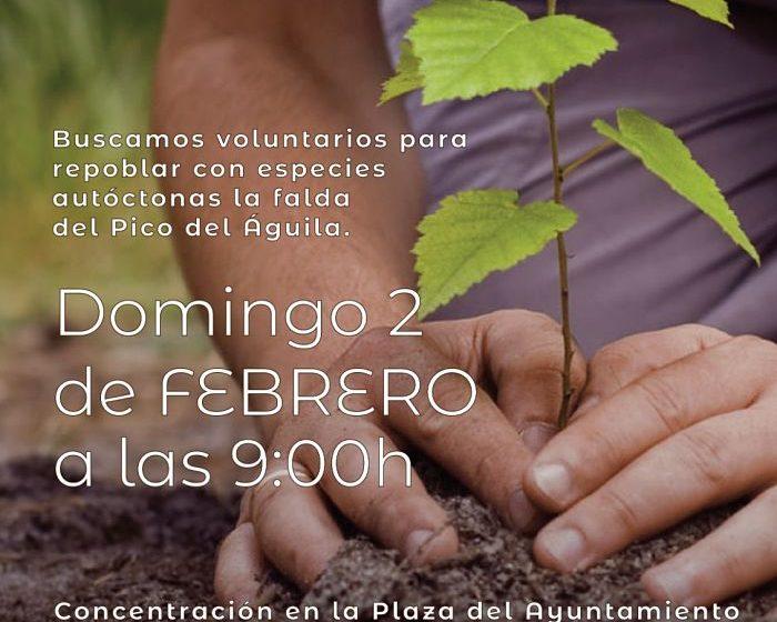 cartel dia del arbol 2020 gatova Camp de Túria
