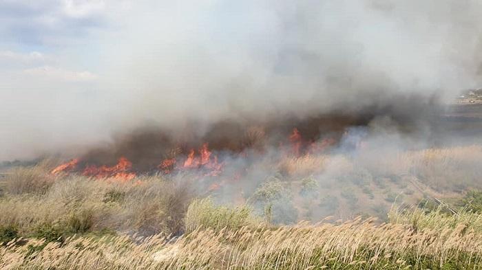 incendio parque natural del turia ribarroja