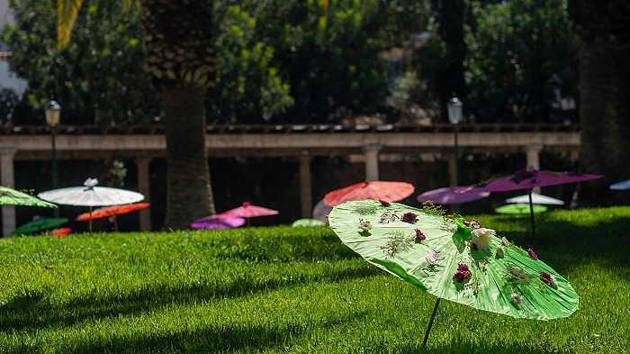 flores parque de la pinadaa