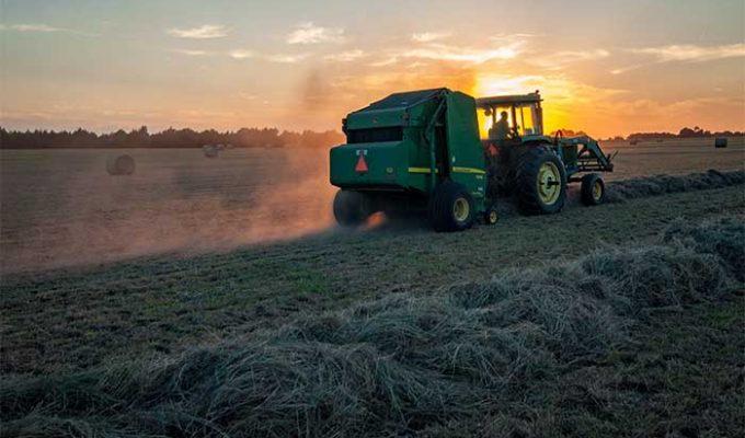 Técnicas innovadoras en agricultura