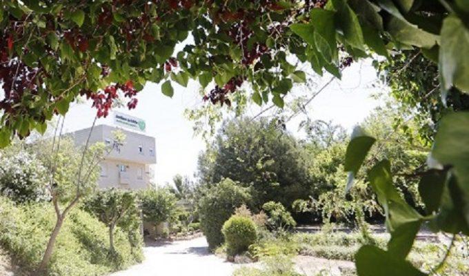 residencia jardines de lliria