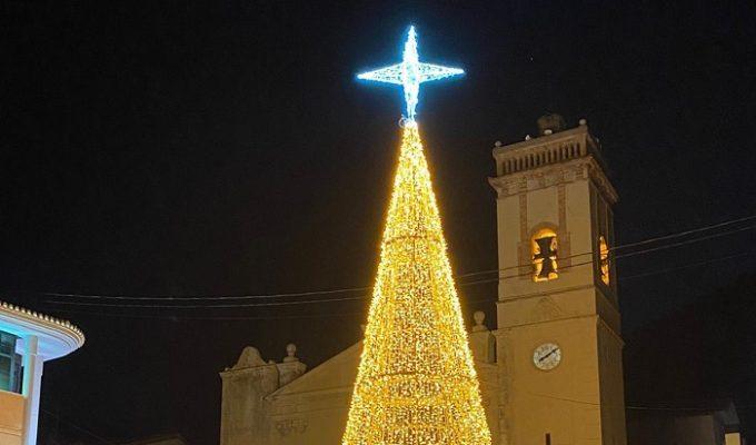 árbol navidad olcoau