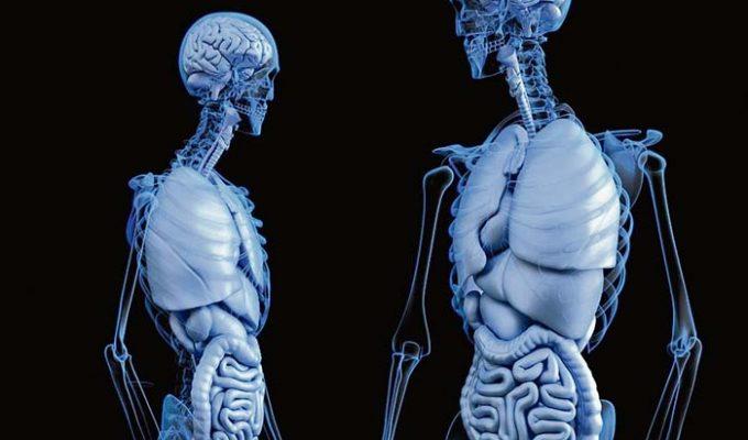 Osteopatía naturopatía Rafa Gimeno
